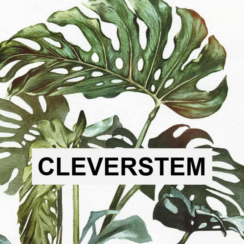 CLEVERSTEM