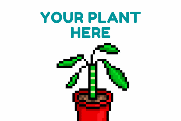 Your Plant Here, Plantly