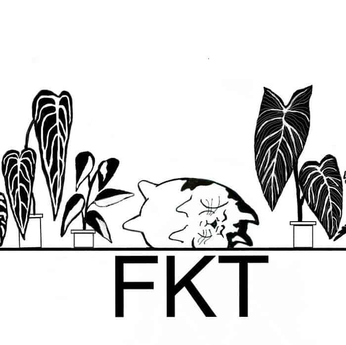 Fat Kat Tropicals