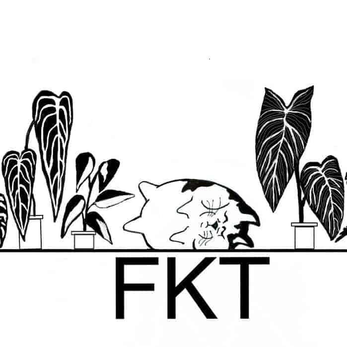 fatkattropicals