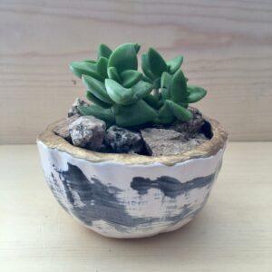 """Ceramic Wabi Sabi Pot - 2"""" with succulent"""